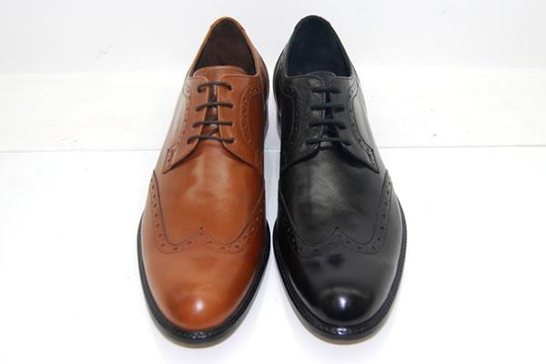 Deri Ayakkabının Rengi Nasıl Değiştirilir?